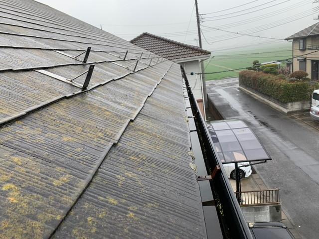 現調時の屋根