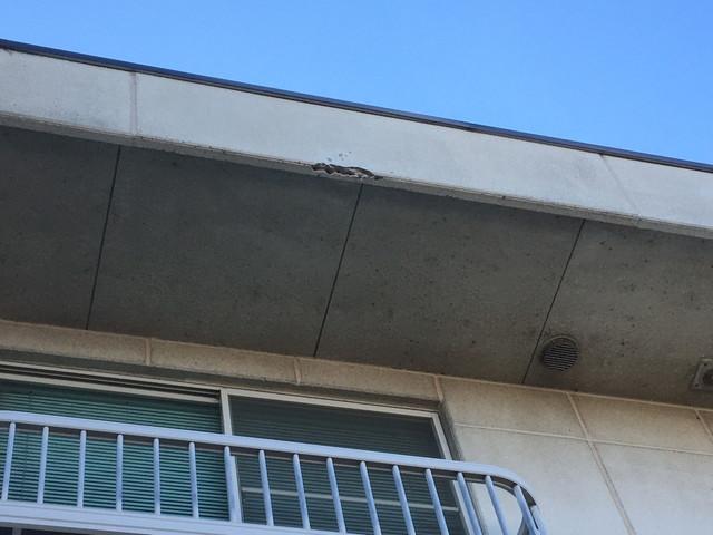 外壁 破損
