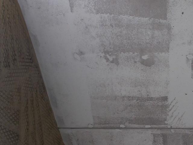 カビている軒天井