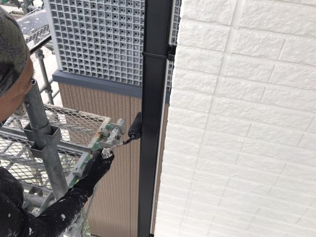 付帯部塗装 竪樋