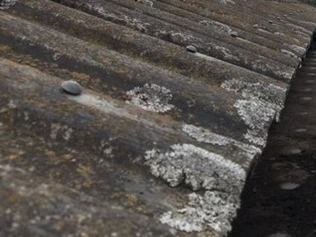 屋根 現地調査 セメント瓦 劣化 カビ
